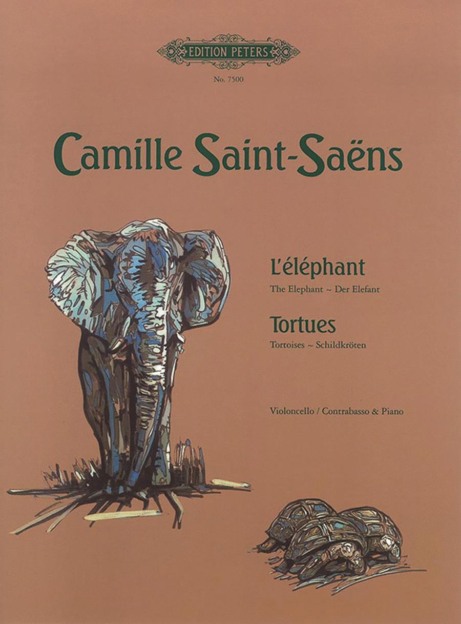 The Elephant / Tortoises