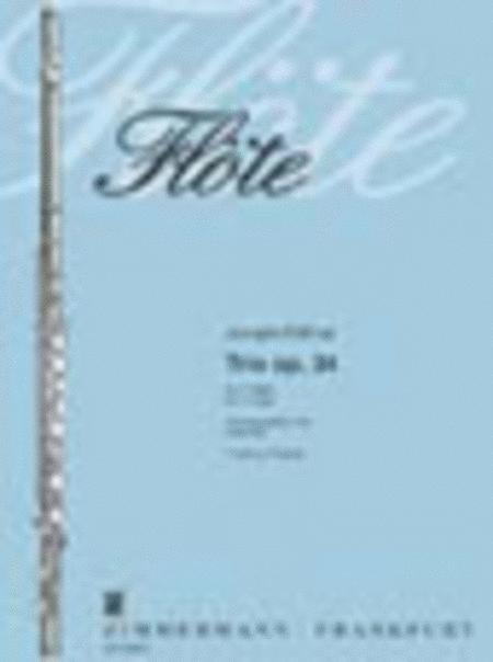 Trio Op. 34 for 3 Flutes
