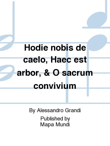 Hodie nobis de caelo, Haec est arbor, & O sacrum convivium
