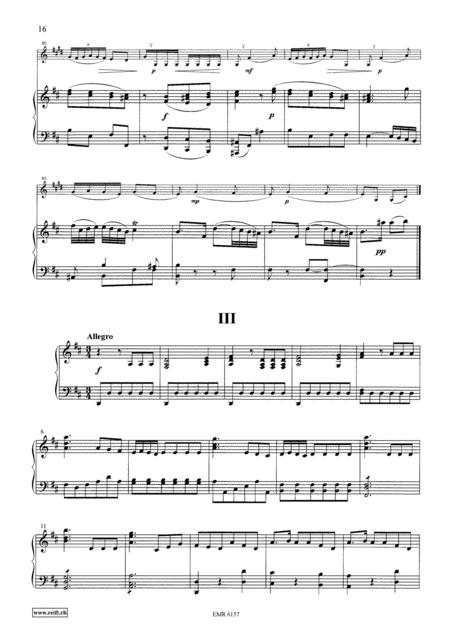 Concerto Nr 2 in D Major