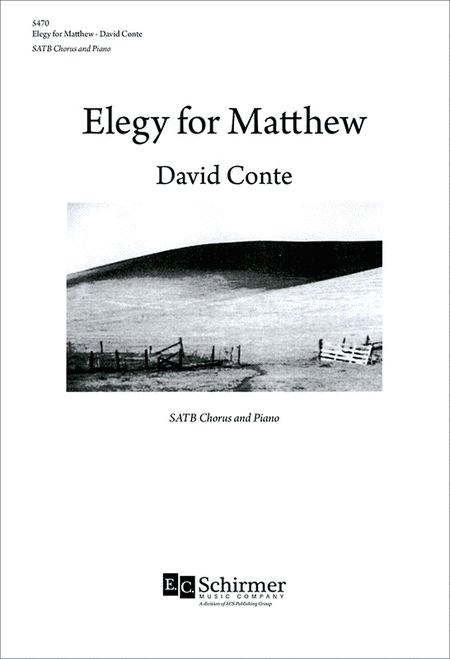 Elegy for Matthew