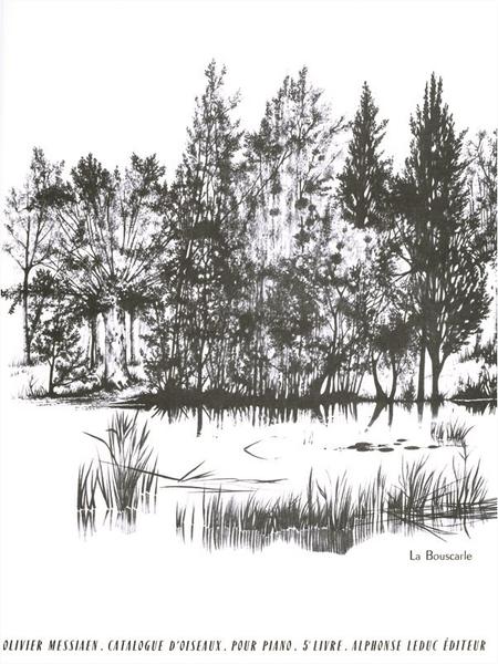 Catalogue D'Oiseaux Volume 5 - 8:L'Alouette Calandrelle/9:La Bouscarle Piano
