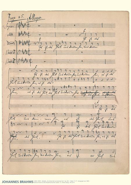 Johannes Brahms Music Manuscript Poster
