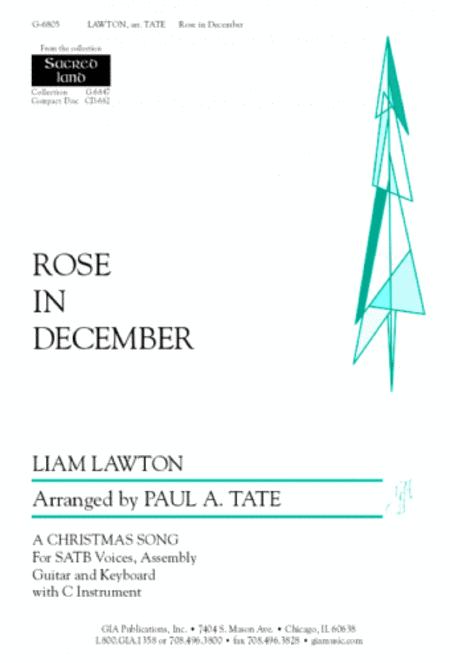 Rose in December