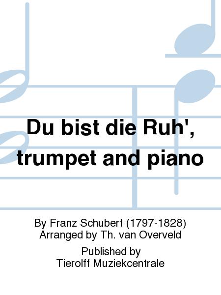 Du bist die Ruh', trumpet and piano