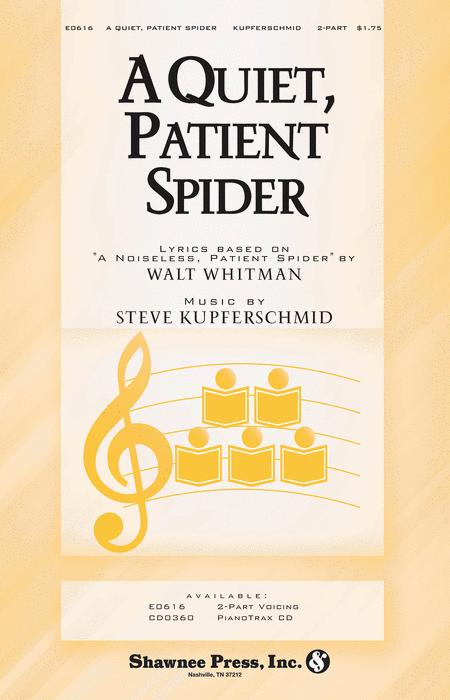 A Quiet, Patient Spider