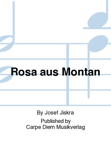 Rosa aus Montan