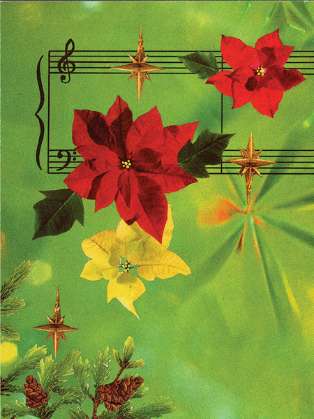 Greeting Cards: Poinsettias with Staff (Pack of 12)