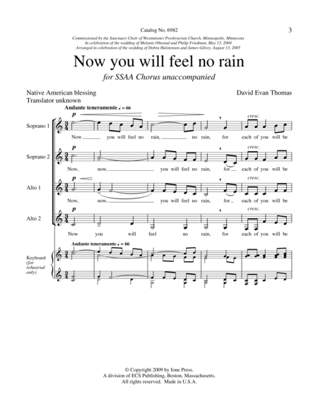 Now You Will Feel No Rain