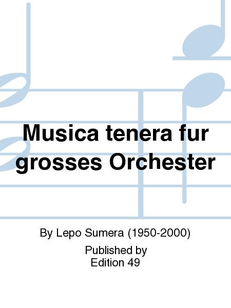 Musica tenera fur grosses Orchester