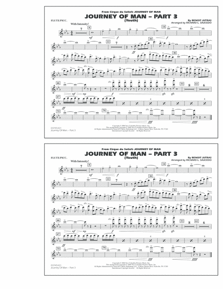 Journey of Man - Part 3 (Youth) - Flute/Piccolo