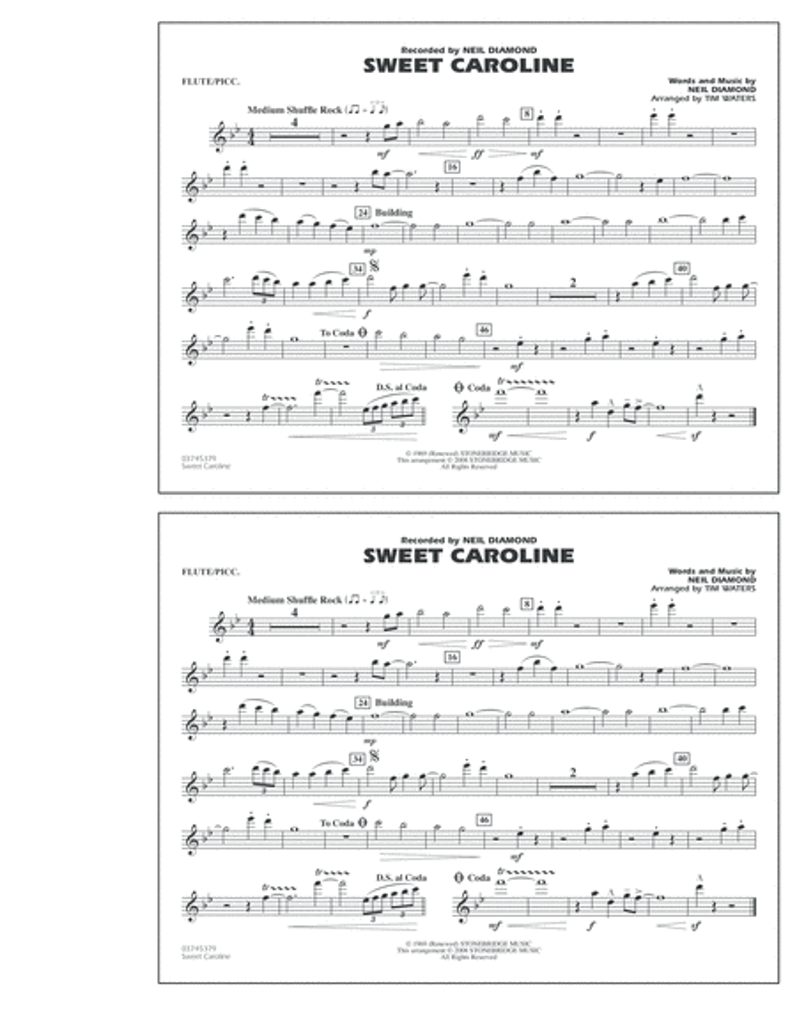 Sweet Caroline - Flute/Piccolo