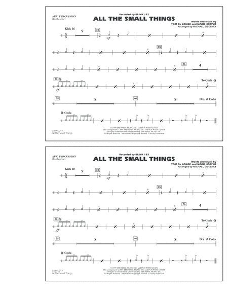All The Small Things - Aux Percussion