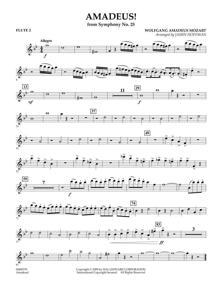 Amadeus! - Flute 2