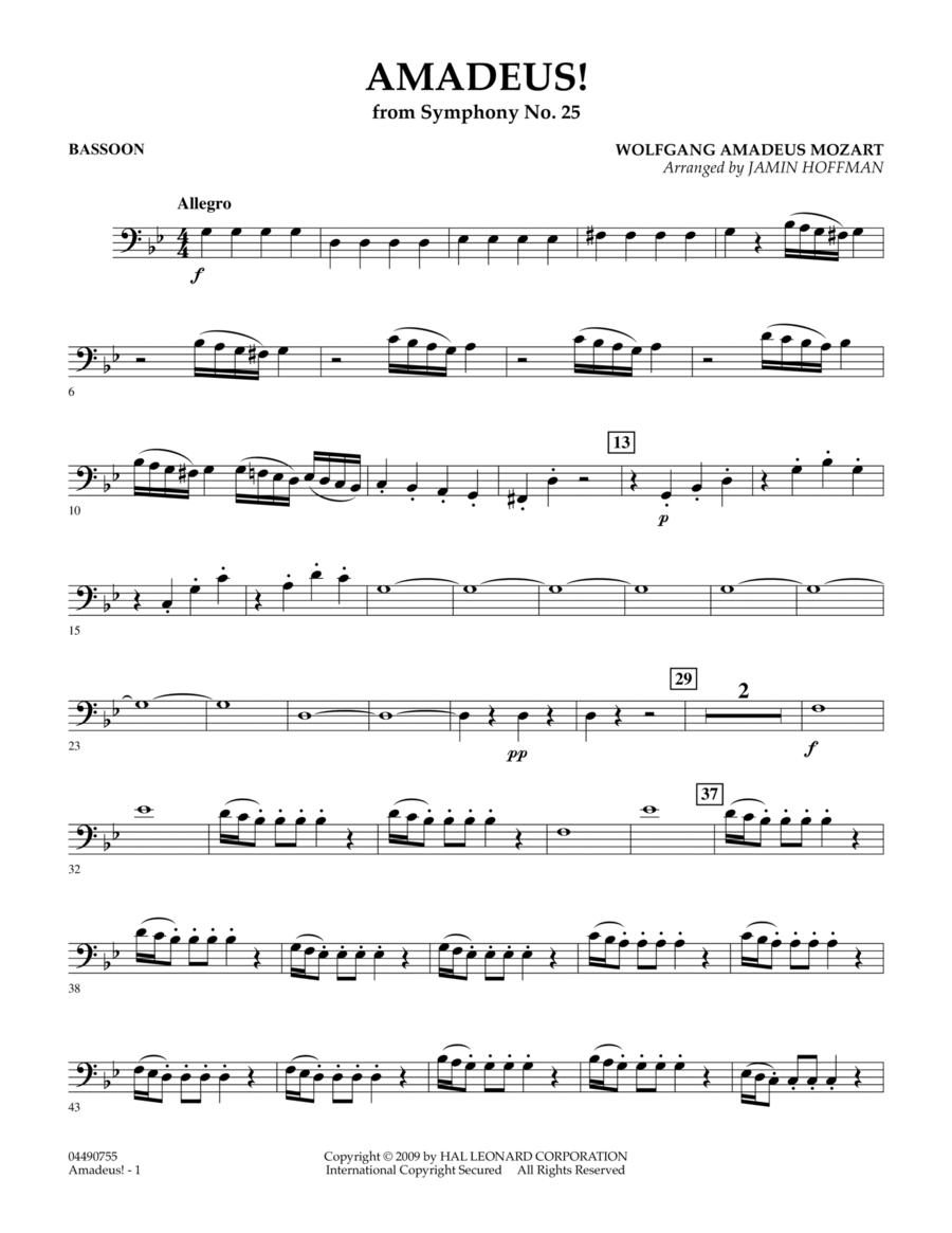 Amadeus! - Bassoon