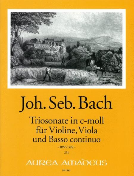 Trio Sonata C minor BWV 528