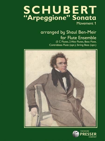 Arpeggione Sonata, Movement 1