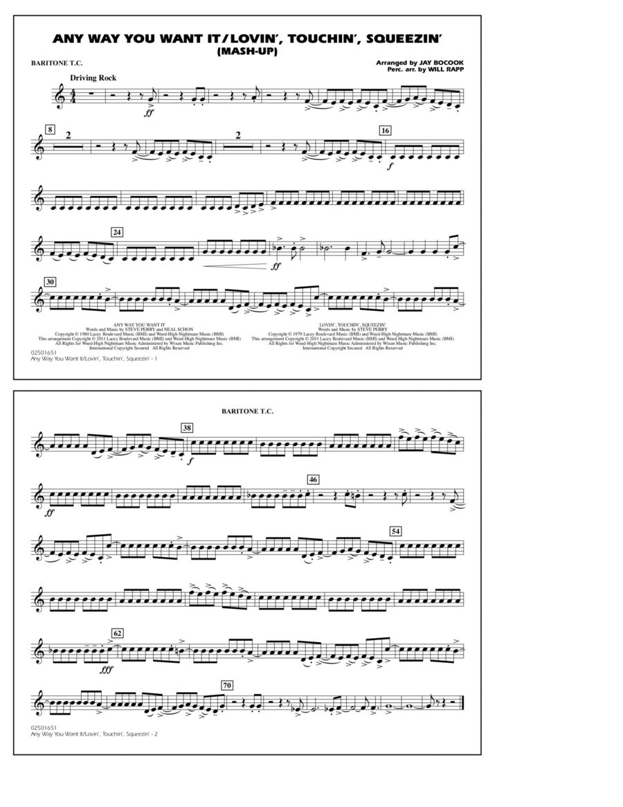 Any Way You Want It / Lovin', Touchin', Squeezin' (Mash-Up) - Baritone T.C.