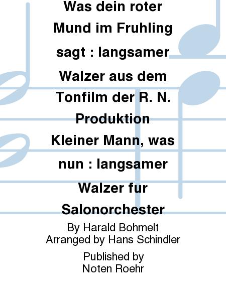 Was dein roter Mund im Fruhling sagt : langsamer Walzer aus dem Tonfilm der R. N. Produktion Kleiner Mann, was nun : langsamer Walzer fur Salonorchester