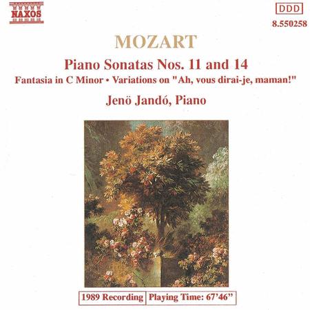 Piano Sonatas / Fantasia / Variati
