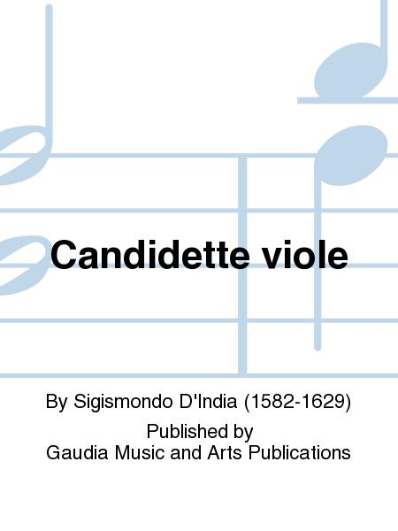 Candidette viole