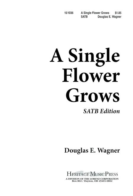 A Single Flower Grows