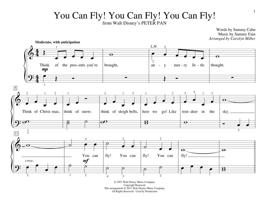 You Can Fly! You Can Fly! You Can Fly!
