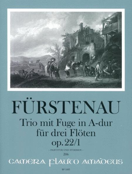 Trio with Fugue op. 22/1