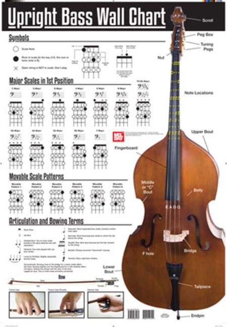 Upright Bass Wall Chart