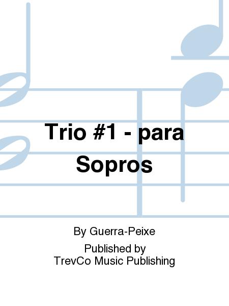 Trio #1 - para Sopros