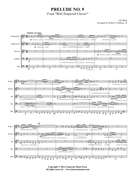 Prelude No. 9