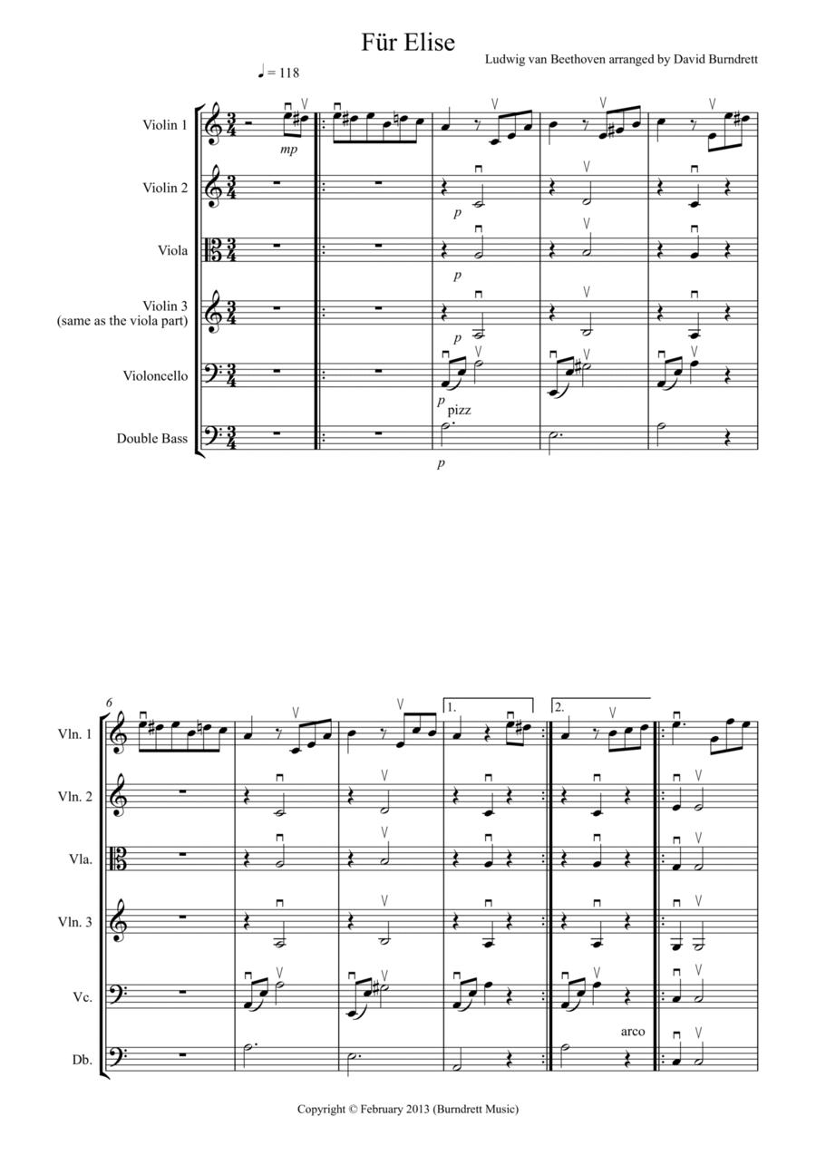 Für Elise for String Orchestra