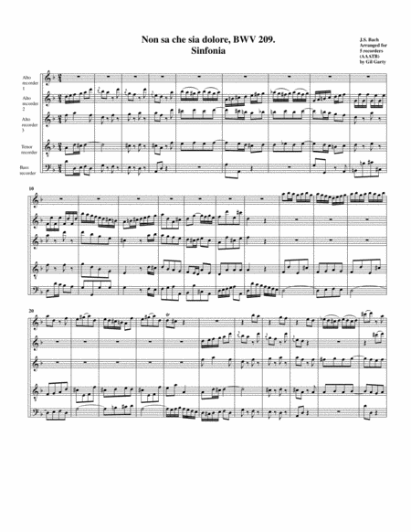 Sinfonia from Cantata BWV 209