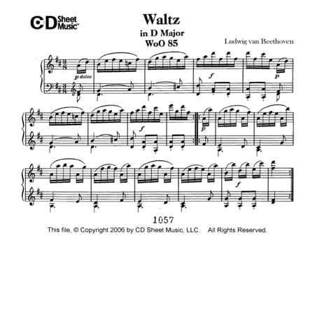 Waltz In D Major, Woo 85
