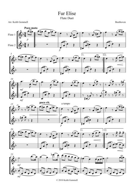 Fur Elise – Flute Duet