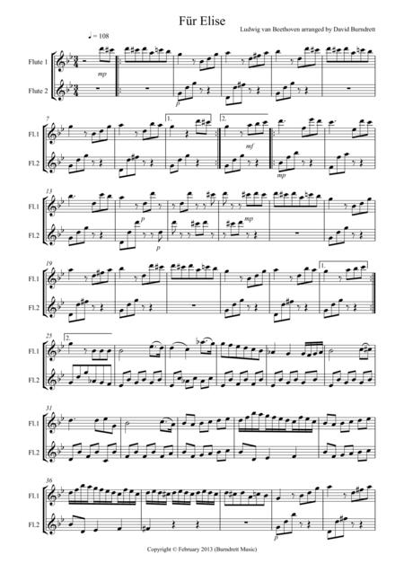 Für Elise for Flute Duet