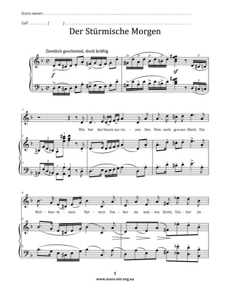 Der sturmische Morgen – Franz Schubert (Die Winterreise Op.89, XVIII)