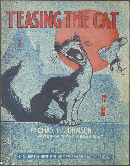 Teasing The Cat