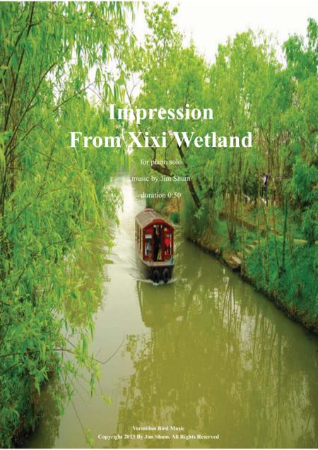 Impression From Xixi Wetland