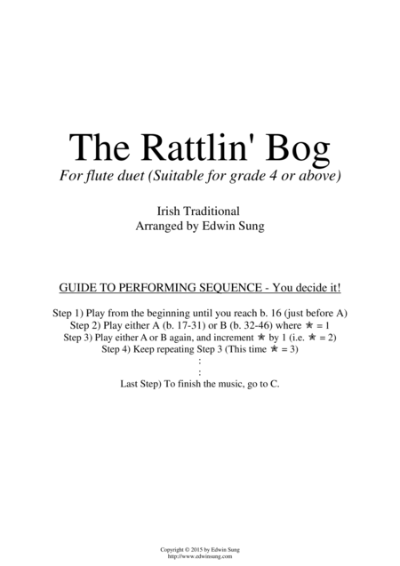 The Rattlin' Bog (for flute duet, suitable for grade 4 or above)