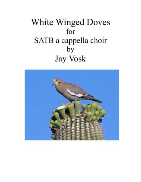 White Winged Doves
