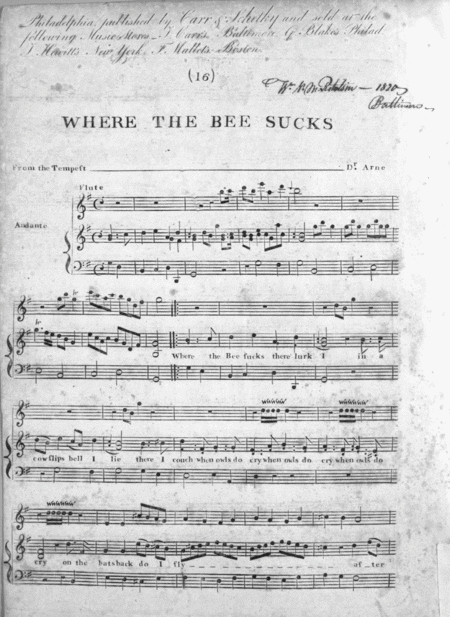 Where The Bee Sucks