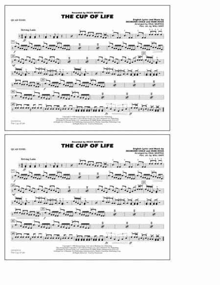 The Cup of Life - Quad Toms