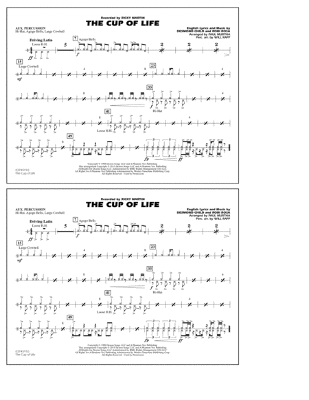 The Cup of Life - Aux Percussion