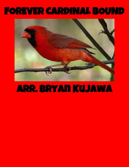 Forever Cardinal Bound