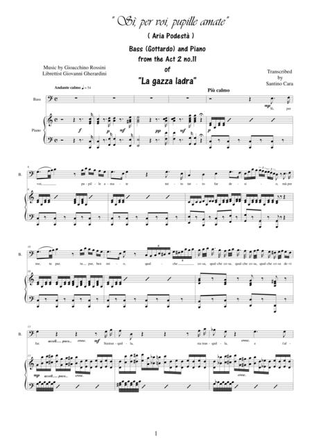 Rossini-La gazza ladra (Act 2s11) Sì per voi, pupille amate - Bass voice and piano