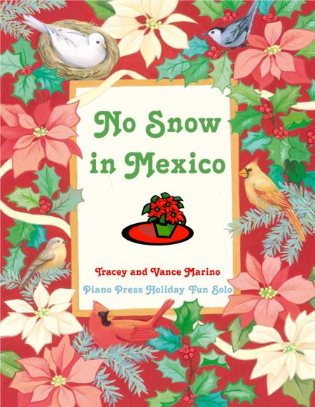 No Snow In Mexico