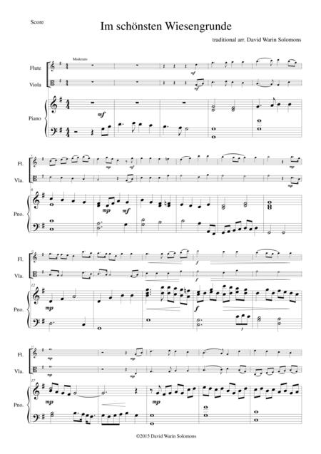 Im schönsten Wiesengrunde for flute, viola and piano