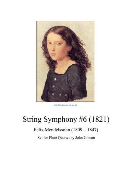 String Symphony #6 set for Flute Quartet