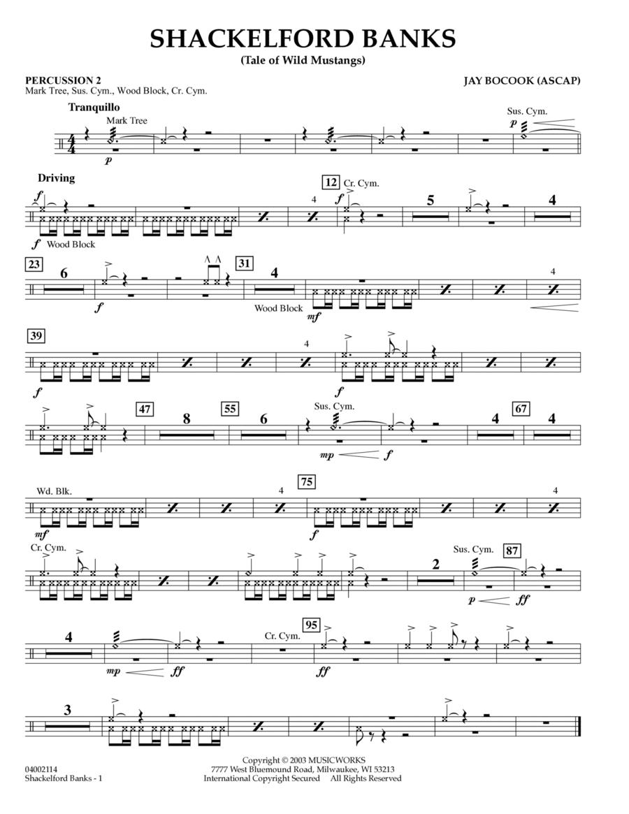Shackelford Banks - Percussion 2